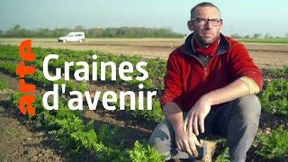 Documentaire À la recherche des semences de demain