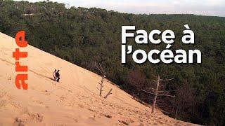 Documentaire Paysages d'ici et d'ailleurs | Arcachon