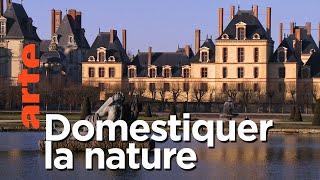 Documentaire Paysages d'ici et d'ailleurs | Fontainebleau