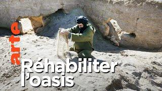 Documentaire Planète sable | Sahara, à la reconquête des terres perdues