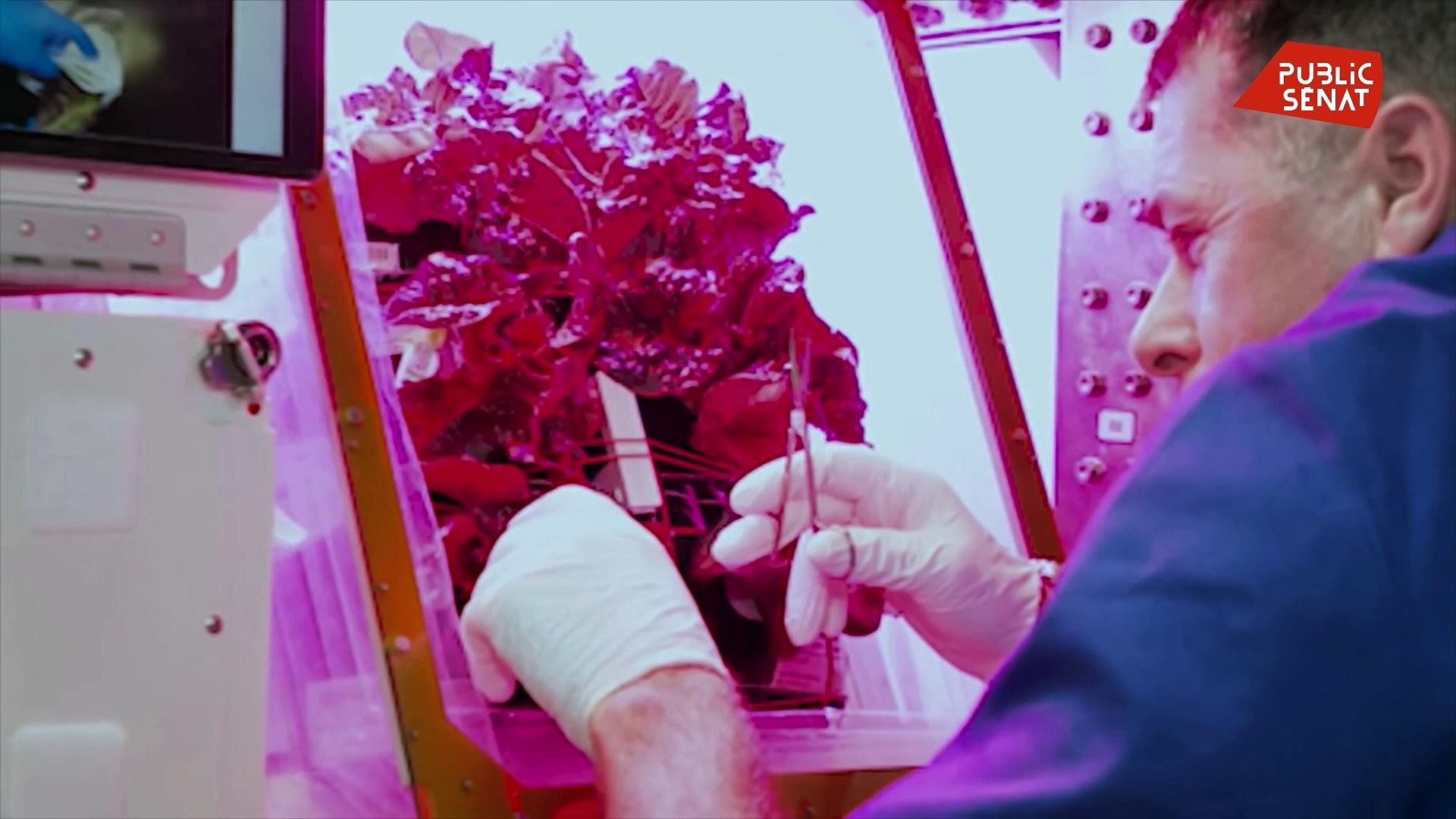Documentaire Thomas Pesquet : objectif Mars