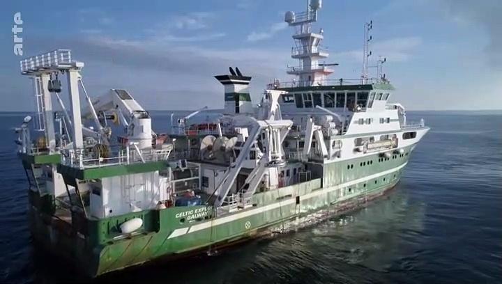 Documentaire Au large de l'Irlande – Baleines et requins en eaux profondes