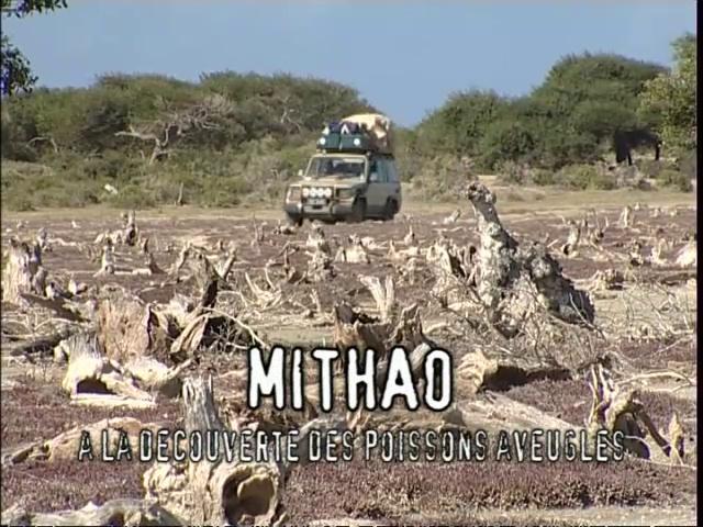Documentaire Latitude Malgache – Mitaho. Découvertes sous-marines