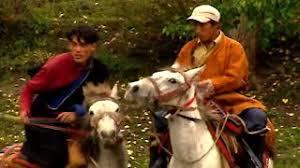Documentaire Ta Peshala, les mustangs du Népal