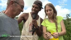 Documentaire Sur les traces du papillon piqueur