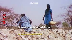 Agroécologie de survie en Afrique