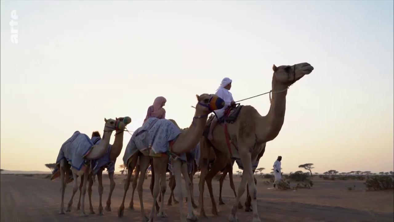 Documentaire Mon beau village – Aux Émirats arabes unis