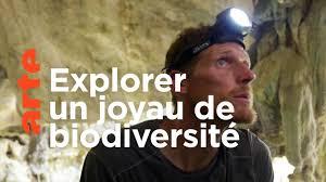 Documentaire Sulawesi, expédition au cœur de l'île mystère
