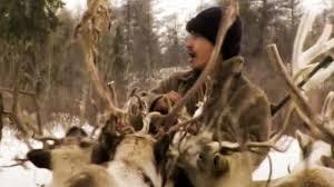 Sur les traces des Evenks, les nomades sibériens