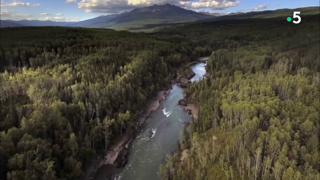 Colombie Britannique, terre sauvage à préserver