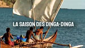 Documentaire Madagascar, la saison des dinga-dinga