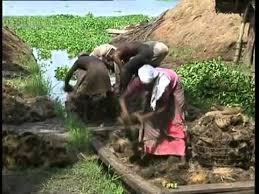 Pêcheurs du Kérala