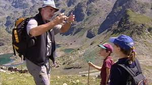 Dans les Alpes, à la découverte des nouvelles forêts