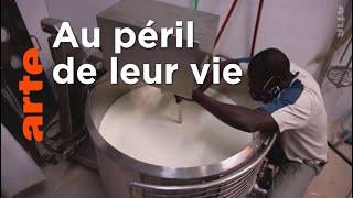 Documentaire Italie : l'insertion des Barikama par le yaourt
