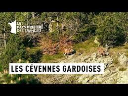 Documentaire Les Cévennes Gardoises – Cévennes