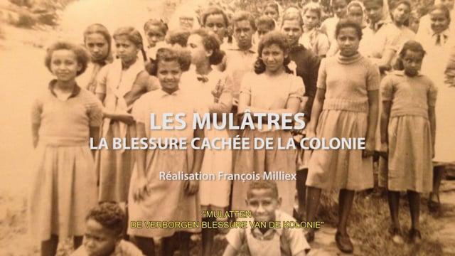 Métis de la Colonie - Les Mulâtres, la blessure cachée de la colonie