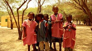 Documentaire Sahel, une aventure écologique en plein désert