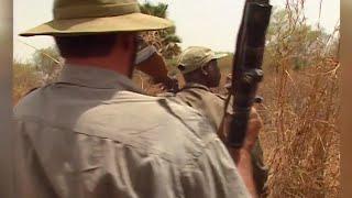 Documentaire Chasse : le buffle nain de la pendjari