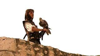 Fauconnier : une pratique vieille de 4000 ans