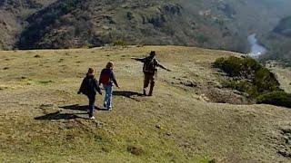 Documentaire Gorges de l'Allier, les milieux naturels restaurés