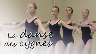 Documentaire La danse des cygnes