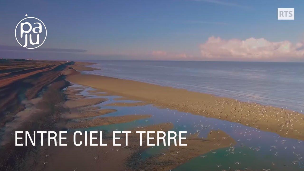 Documentaire Les amoureux de la baie de Somme racontent sa faune