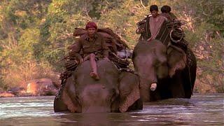 Documentaire Les chevaliers d'ivoire