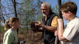 Documentaire Trésors de la forêt d'Argonne