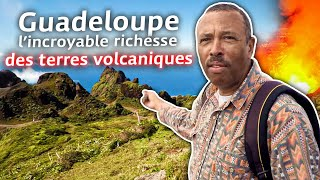 Guadeloupe, l'incroyable richesse des terres volcaniques