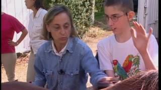 Documentaire L'équitation pour personnes handicapés