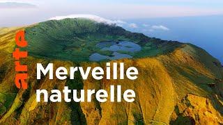 Documentaire Les Açores sauvages