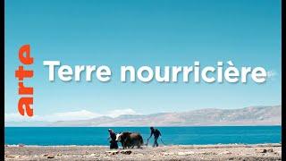 Les bergers du Qinghai | Sur les contreforts de l'Himalaya (1/3)
