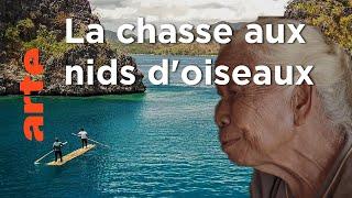 Documentaire Les secrets d'une île | Philippines, les Tagbanwa | À la rencontre des peuples des mers