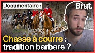 Chasse à courre : la guerre entre chasseurs et  militants animalistes