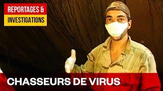 Chasseurs de virus - trouver l'invisible au cœur de la forêt Amazonienne