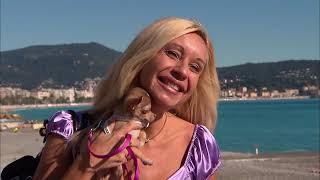 Documentaire Chihuahua : le chien accessoire de mode