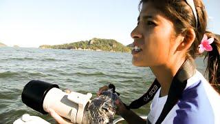 Elle protège la faune marine de la baie de Rio