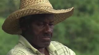 Documentaire Guadeloupe, le meilleur rhum du monde !