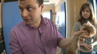 Il a monté un business de cheveux en Russie