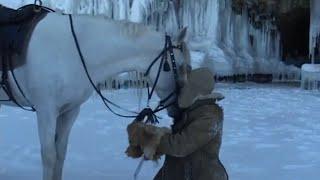 Documentaire Le Cheval Artiste – Il était une fois en Sibérie