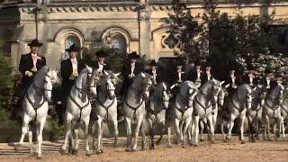 L'école royale andalouse d'art équestre