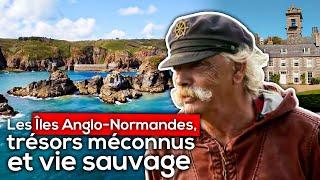 Documentaire Les Îles Anglo-Normandes, trésors méconnus et vie sauvage