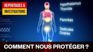 Perturbateurs endocriniens - Les poisons du quotidien
