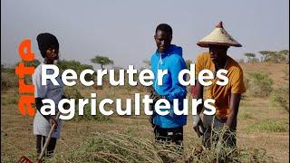 Documentaire Sénégal : la téléréalité au service de l'agriculture