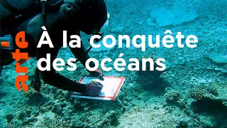 À qui appartiennent les océans ?