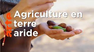 Documentaire Cultiver malgré la sécheresse