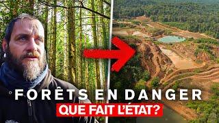 Documentaire Forêts en danger : que fait l'Etat ?