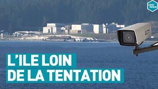 Documentaire L'île sans retour pour prédateurs