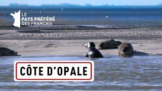 Documentaire La Côte d'Opale, des Deux-Caps aux marais de Saint-Omer