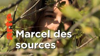La Provence de Marcel Pagnol  | Invitation au voyage